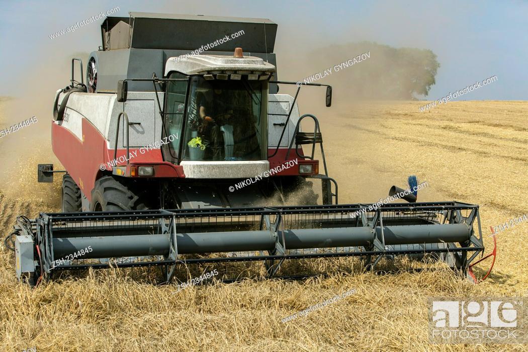 Stock Photo: Harvest breads fields Belogoriya.