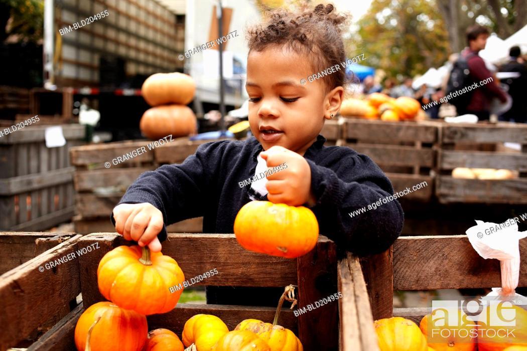 Stock Photo: Mixed race girl picking pumpkins at market.