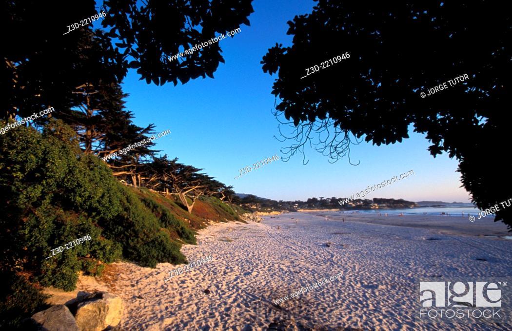 Stock Photo: Carmel-by-the-Sea, beach at sunset. California.