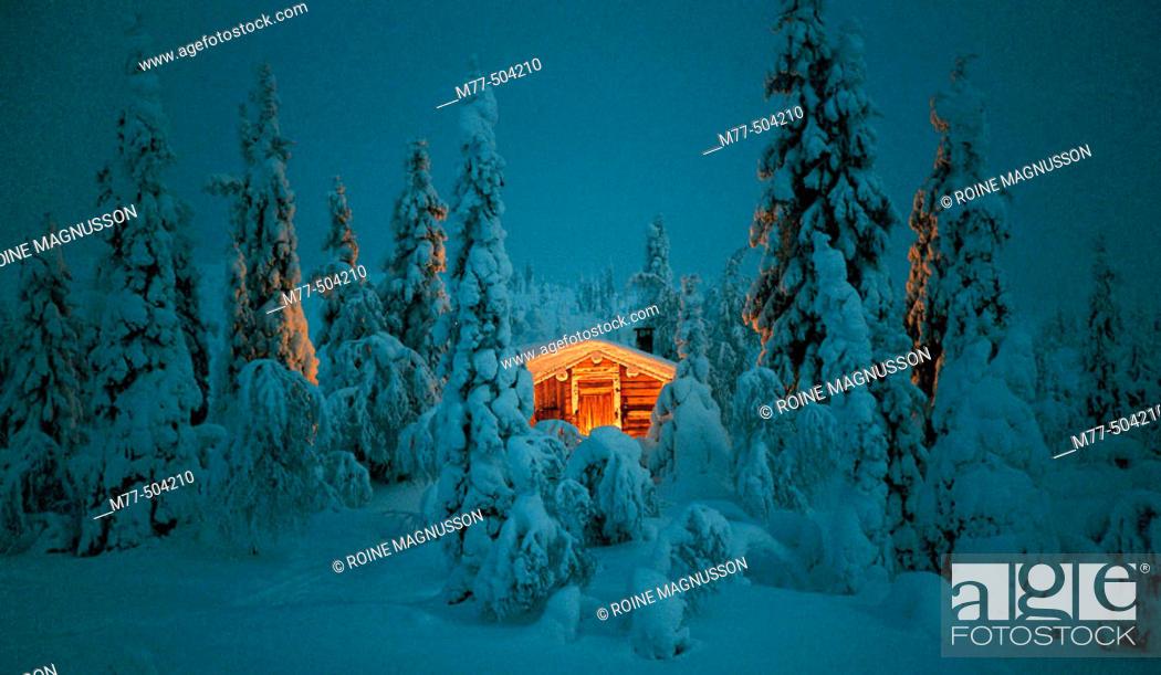 Stock Photo: Riisitunturi National Park.Finland.