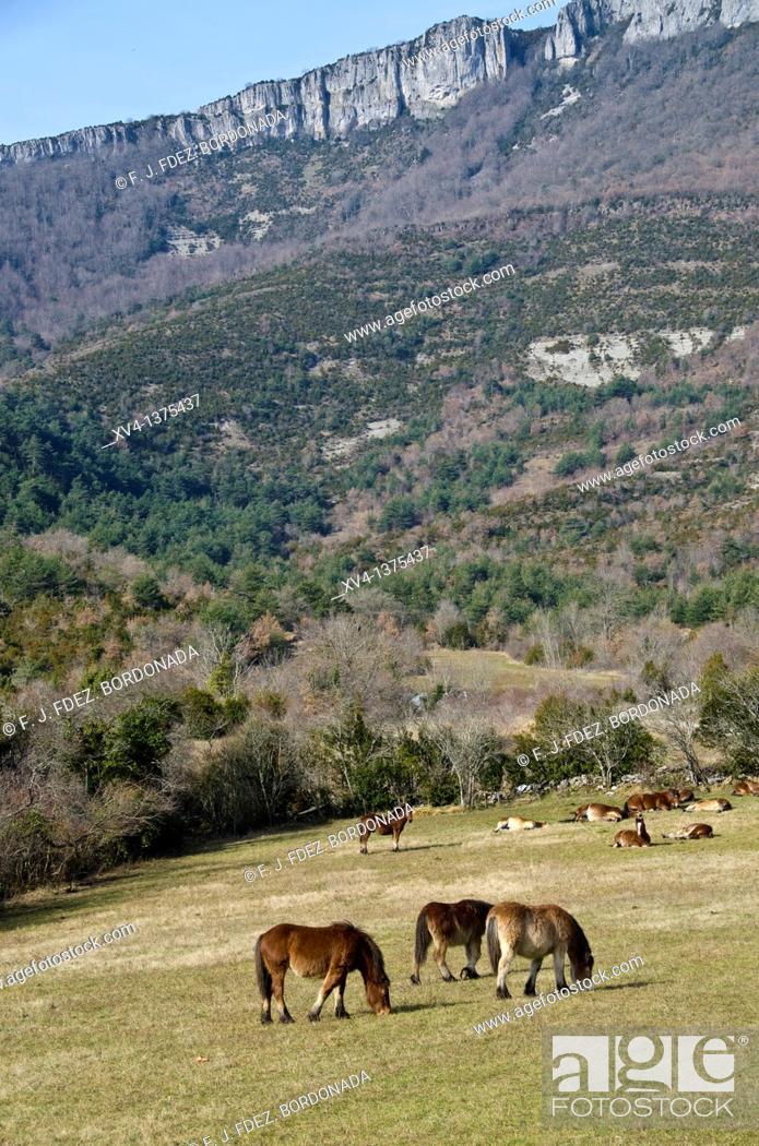 Stock Photo: Urdiroz village, Arce Valley, Navarre, Spain.