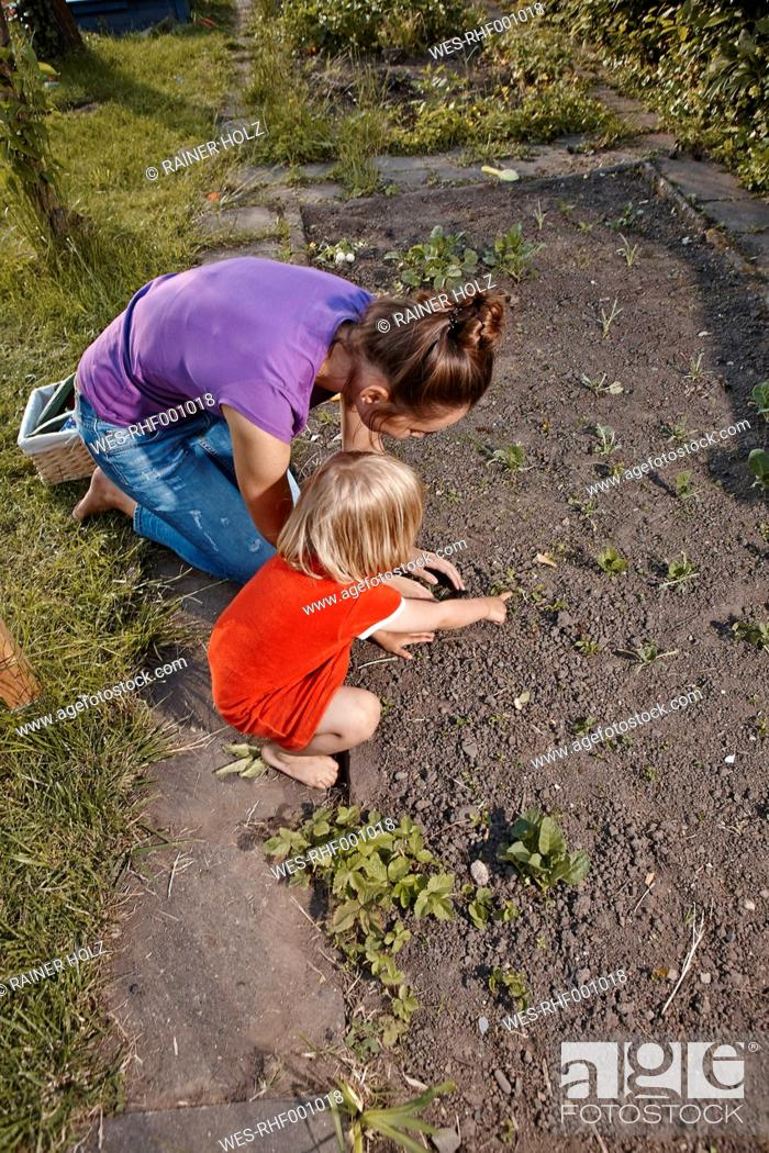 Stock Photo: Mother and daughter planting seedlings in garden.