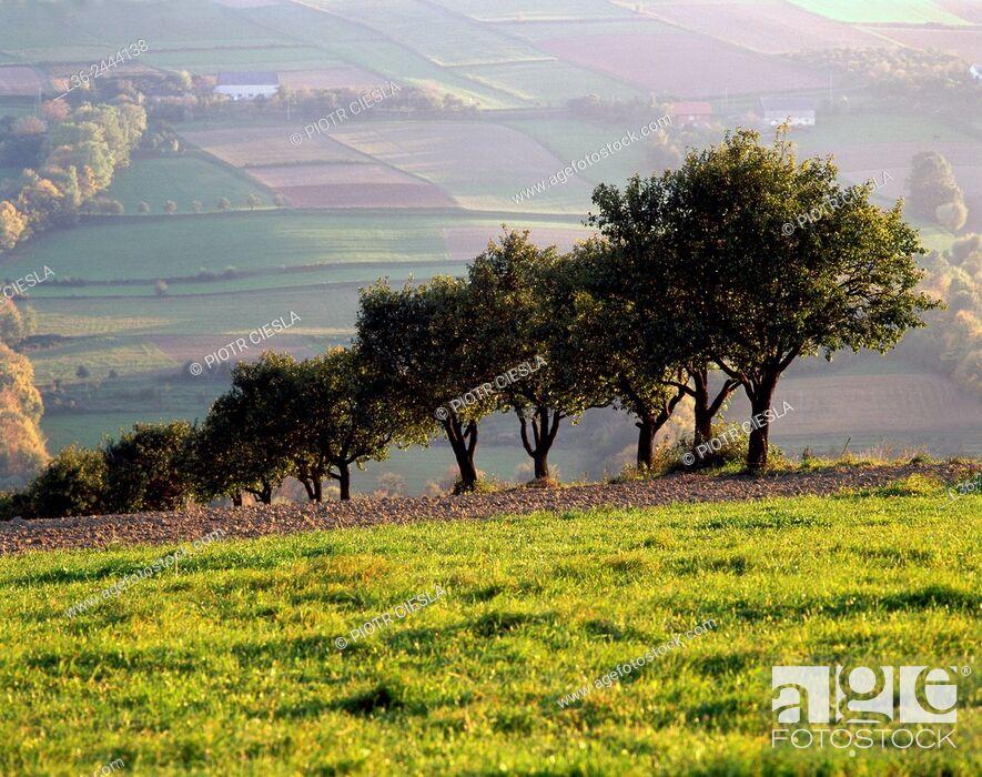 Stock Photo: Beskid Niski mountains, Poland.
