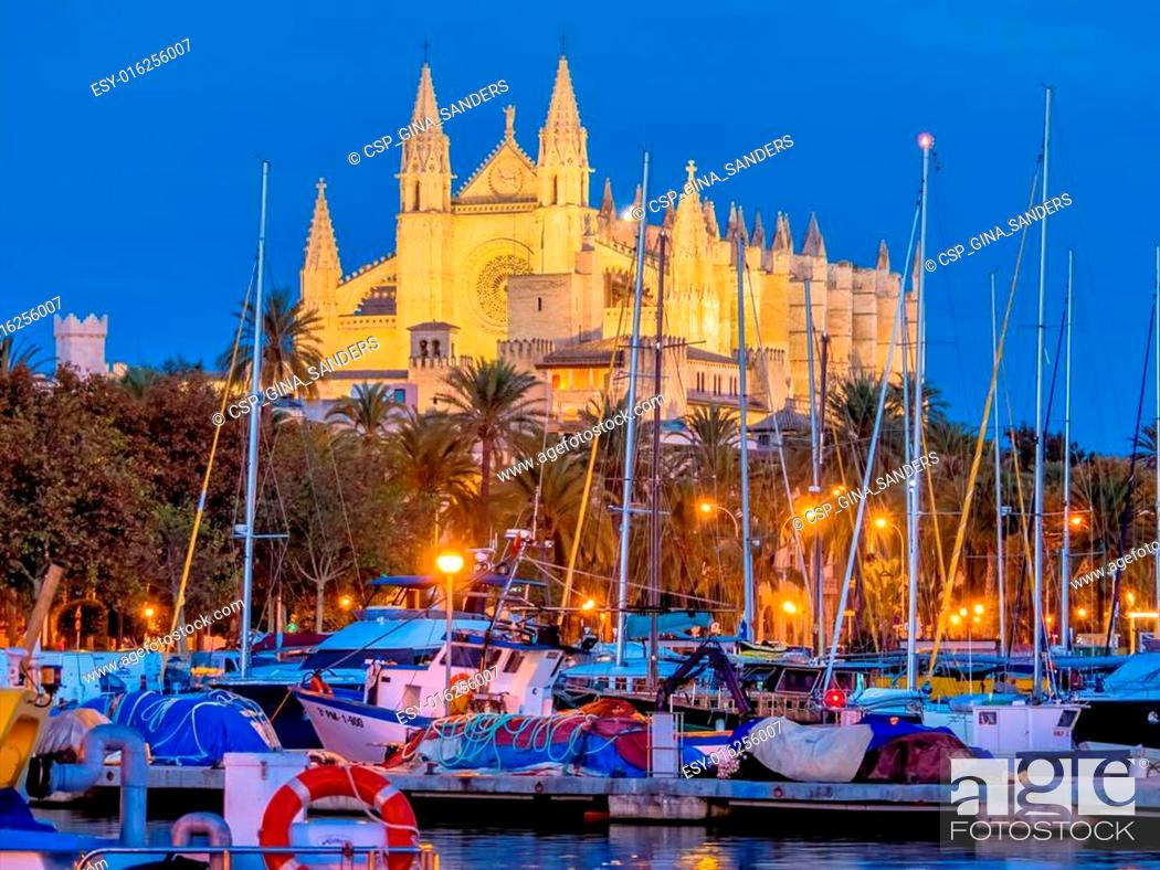 Stock Photo: spain, mallorca, palma cathedral.