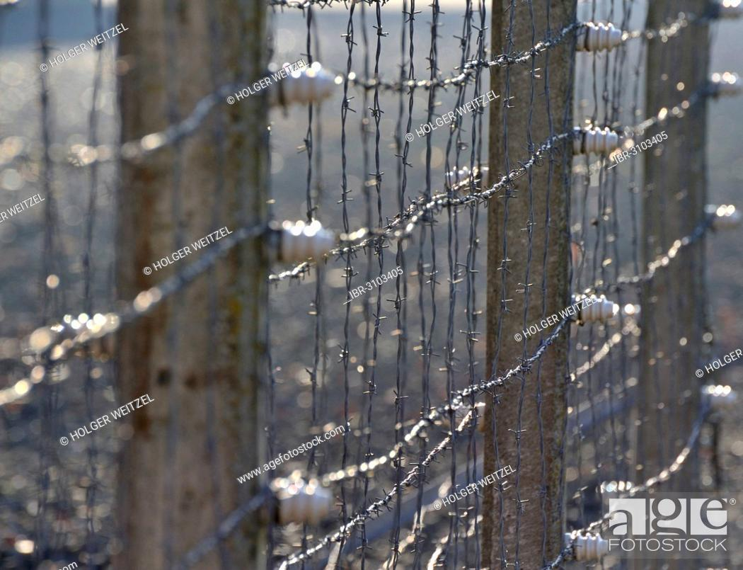 barbed wire fence concentration camp. Stock Photo - Barbed Wire Fence, Neuengamme Concentration Camp Memorial Fence