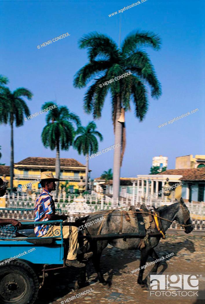 Stock Photo: Plaza mayor, old man with donkey.