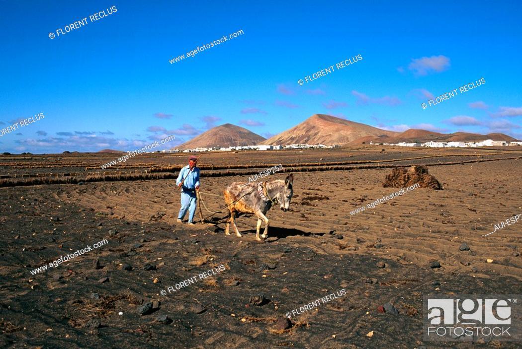 Stock Photo: Spain - Canary Islands - Lanzarote - San Bartolome Road.