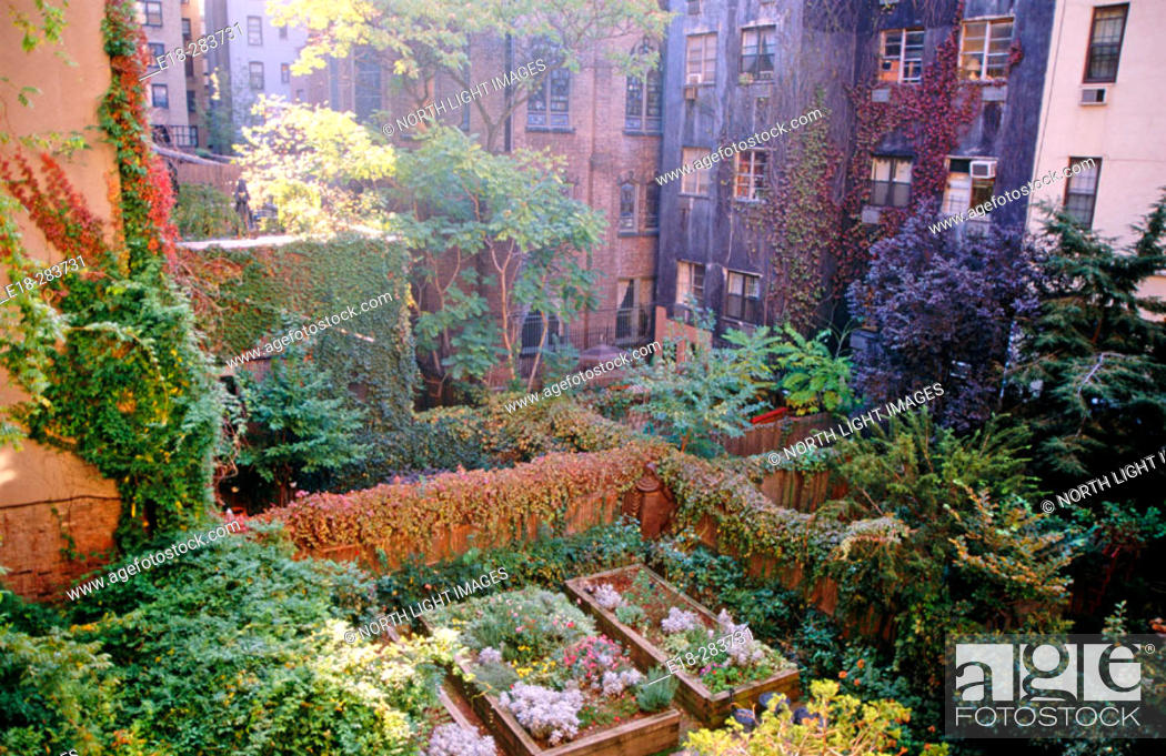 Stock Photo   Patio Gardens Amidst High Rise Apartments In Chelsea, Behind  Leo House. New York City, USA