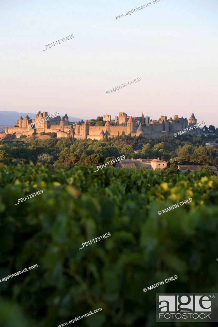 Stock Photo: France, Languedoc, Carcassonne, castle walls from vinyard.