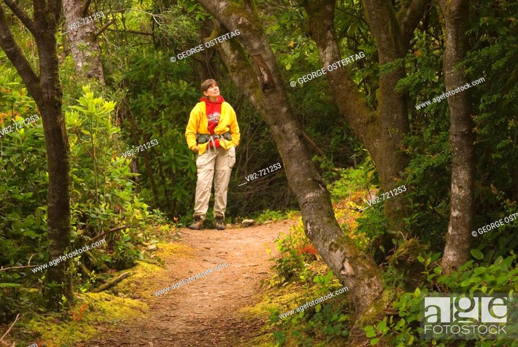 Stock Photo: Sutton Creek Trail, Siuslaw National Forest, Oregon, USA.