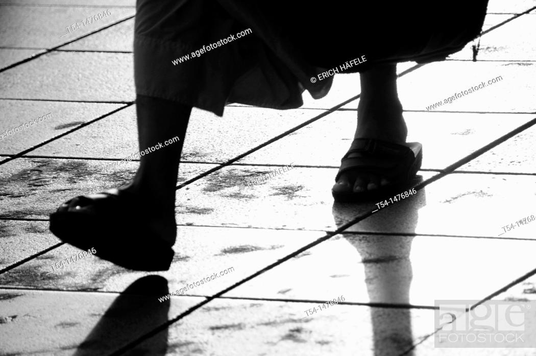 Stock Photo: The Walk of a Monk.