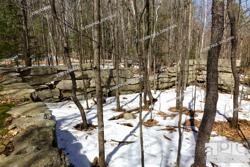 Stock Photo: The remnants of an abandoned granite foundation from the 19th - 20th century mountain settlement in the forest of Pawtuckaway State Park in Deerfield.