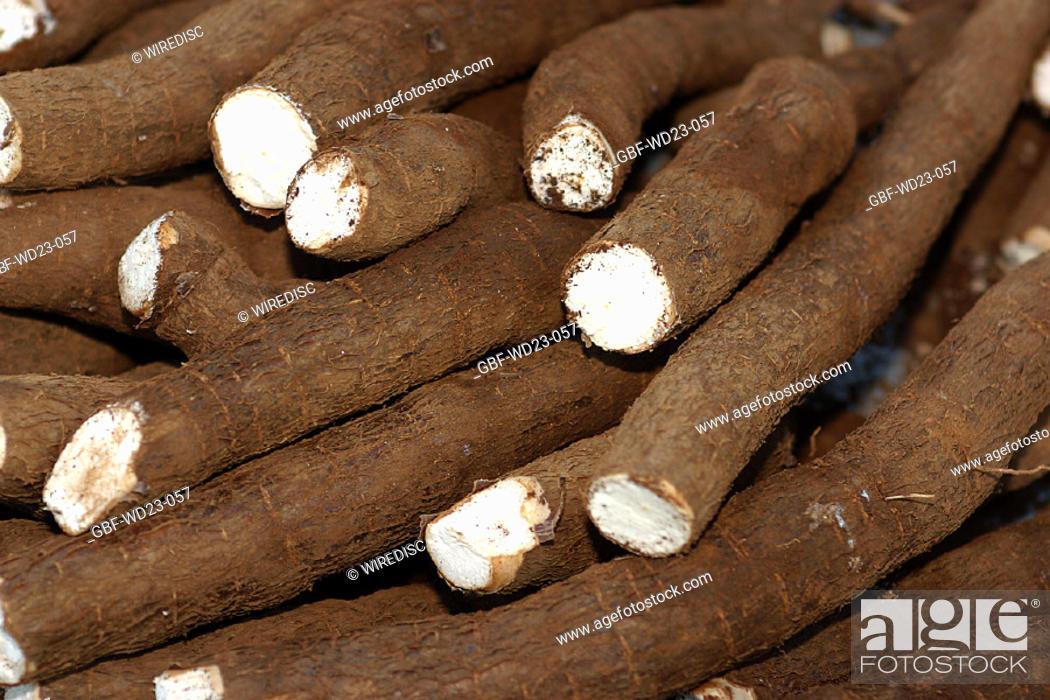 Stock Photo: Cassava, market, agriculture, Brazil.