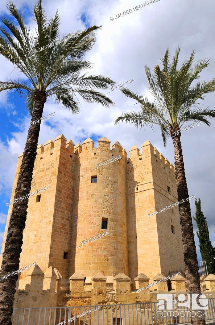 Stock Photo: Castle of La Calahorra. Córdoba. Andalusia. Spain.