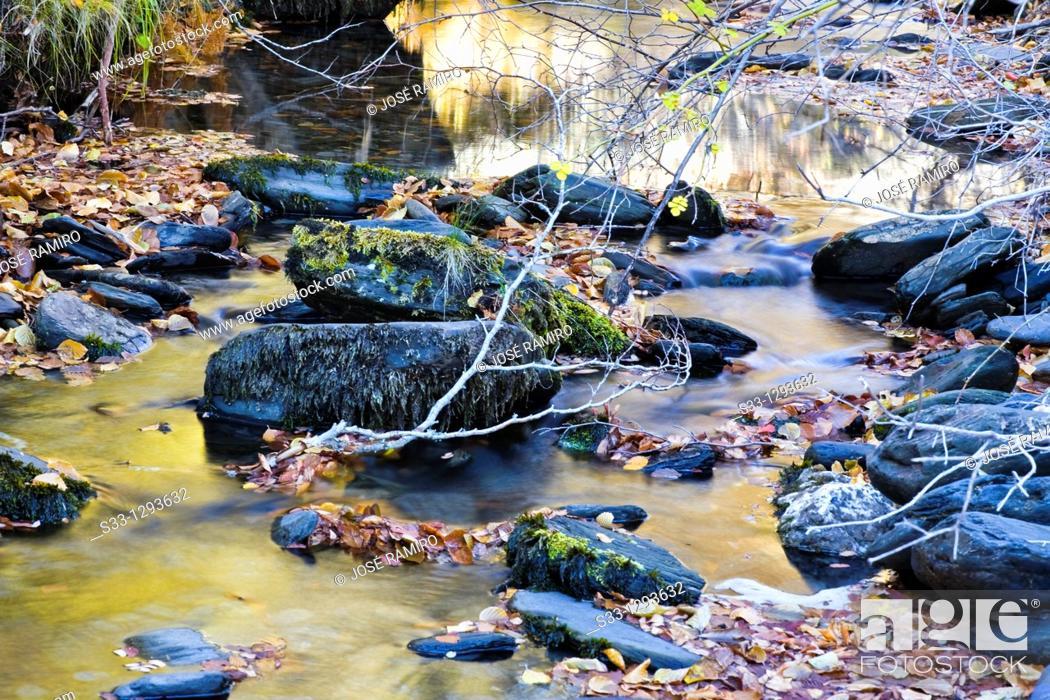 Stock Photo: Lillas river in the Tejera Negra, Sierra Norte Natural Park, Guadalajara province,  Castile-La Mancha, Spain.