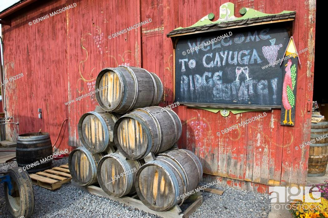 Stock Photo: Wine Casks Vineyards Finger Lakes Region New York Cayuga Lake.