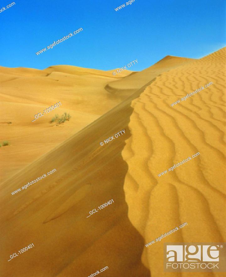 Stock Photo: Desert dune in the UAE.