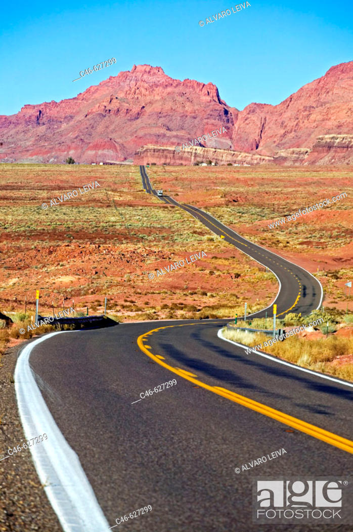 Stock Photo: Road, Arizona, USA.