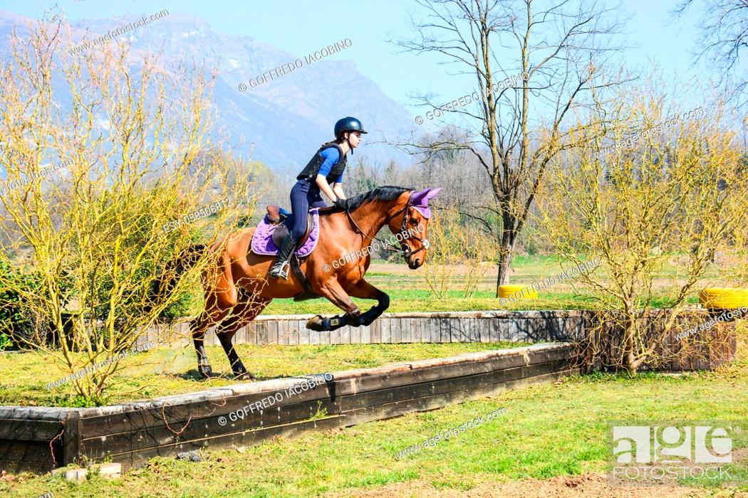 Stock Photo: Italian horsewoman in country riding shows trim and balance rider and horse.