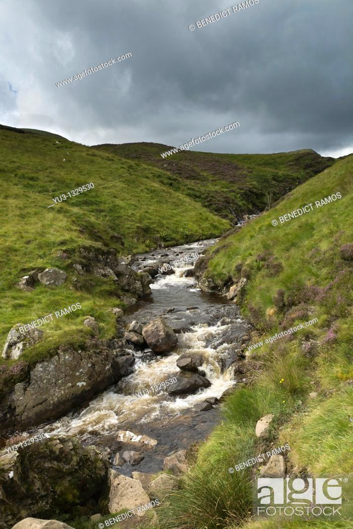 Stock Photo: Stream running down hillside in the Southern Uplands near Moffat, Dumfries and Galloway, Scotland, England.