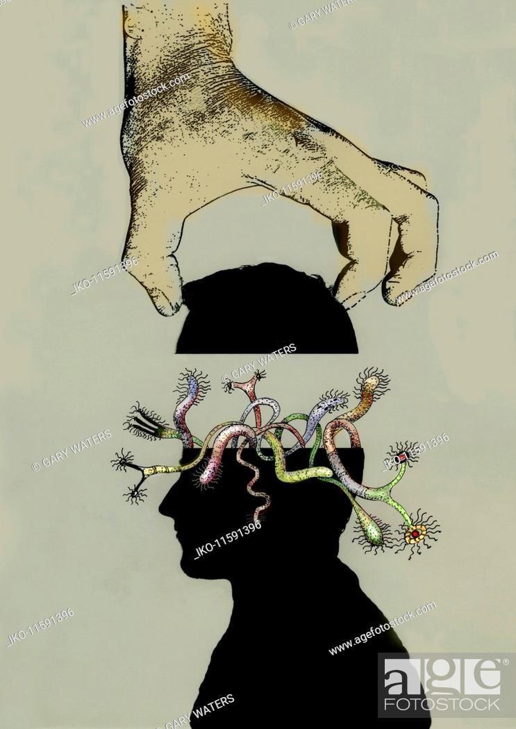 Imagen: Hand lifting off top of head full of weird fantasy creatures.