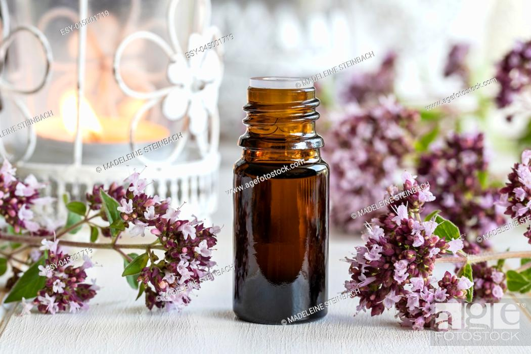 Stock Photo: A bottle of essential oil with fresh blooming oregano twigs.