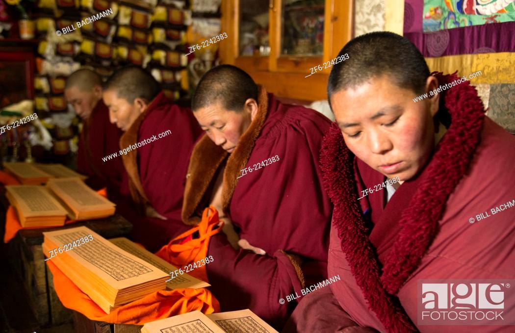 Photo de stock: Nepal Himalayas Buddhist nuns reading praying at the Kharigandentenphelling Monastery in the village of Thamo Solukhumbu Mt Everest remote religion Buddhst.