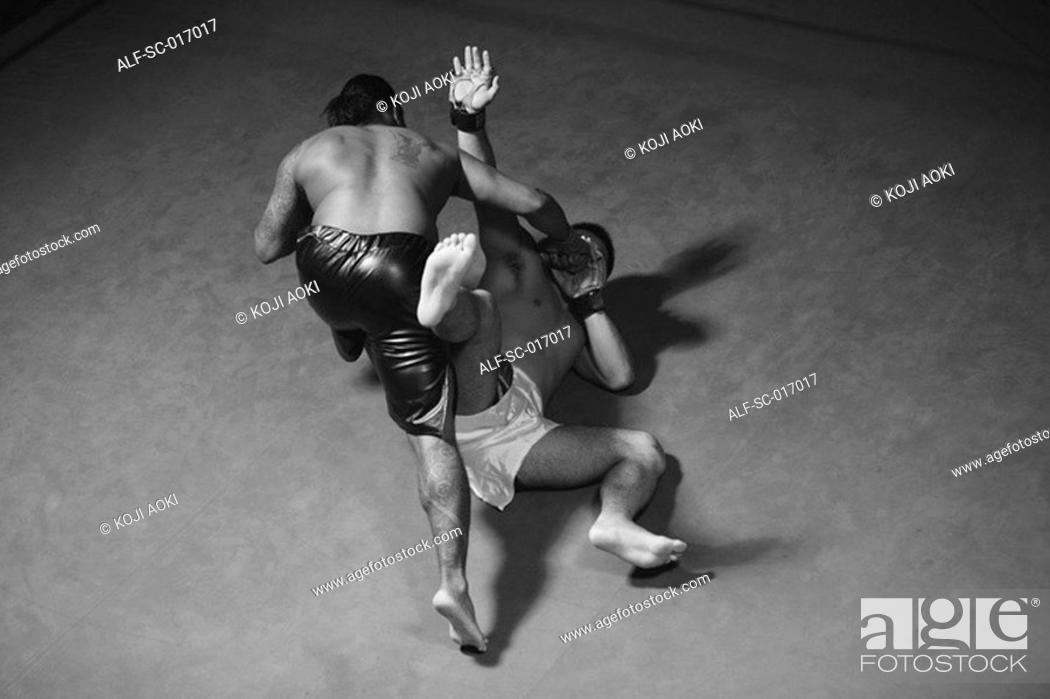 Stock Photo: Two Mixed Martial Arts Fighter Fighting.