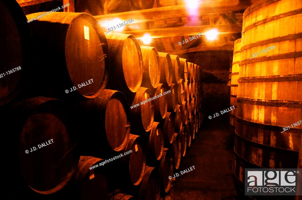 Stock Photo: France, Midi Pyrénées, Gers, barrels where the Armagnac is aging at the Tariquet Wines and Armagnac Estate, near Eauze.