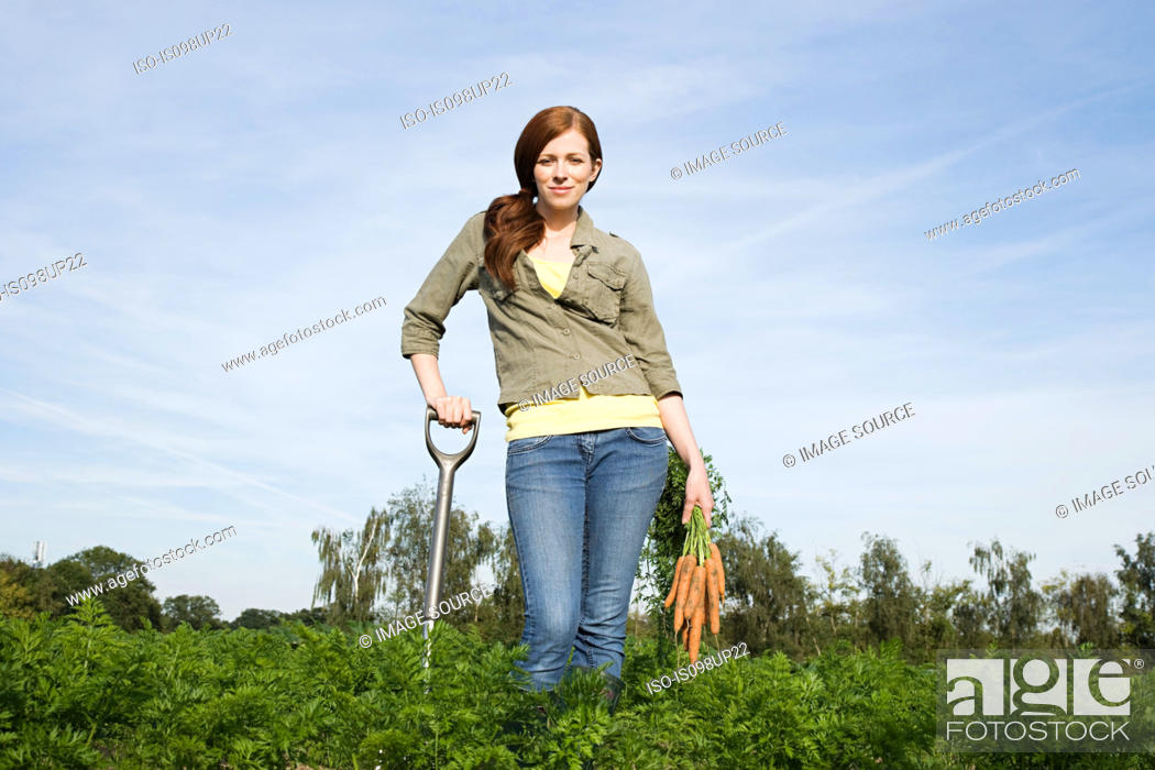Stock Photo: Young woman harvesting carrots in field.