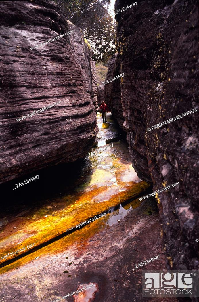 Stock Photo: Giant Rocks on river bed on the summit of Auyantepuy dwarf explorer in a labyrinth of stratified boulders. Canaima National Park, Bolivar state.