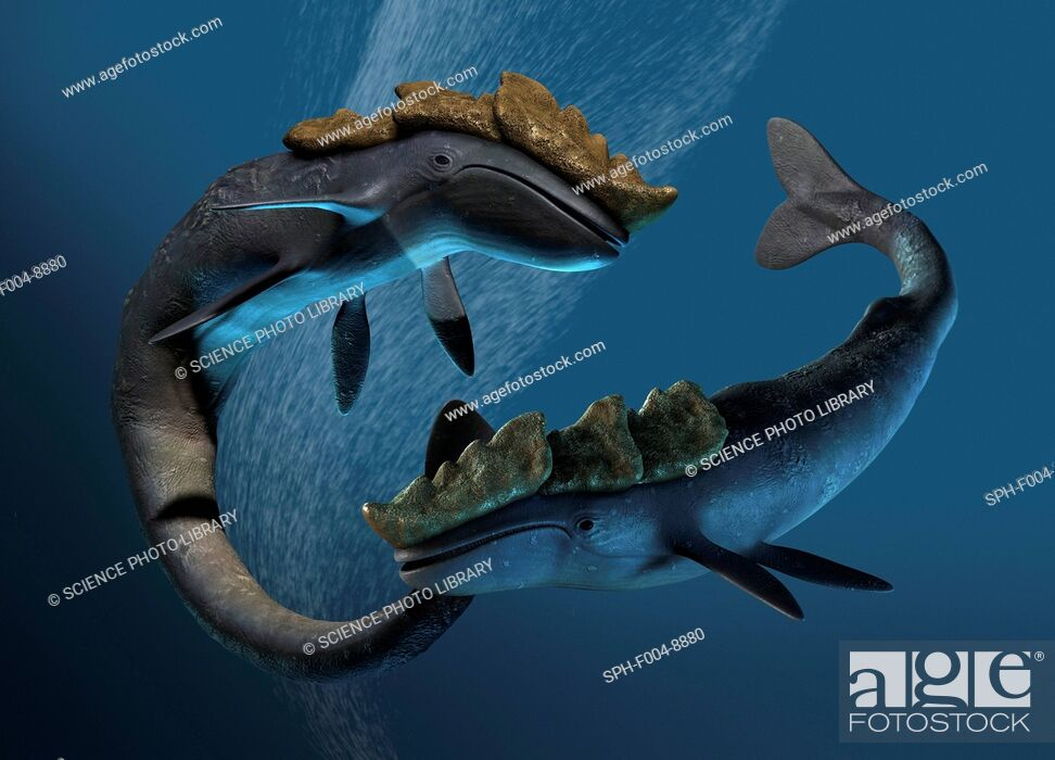 Photo de stock: Leviathan sea monsters, computer artwork.