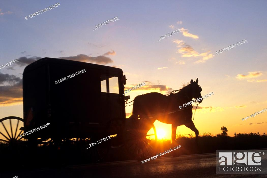 Stock Photo: Amish horse-drawn buggy, Lancaster County, Pennsylvania, United States.