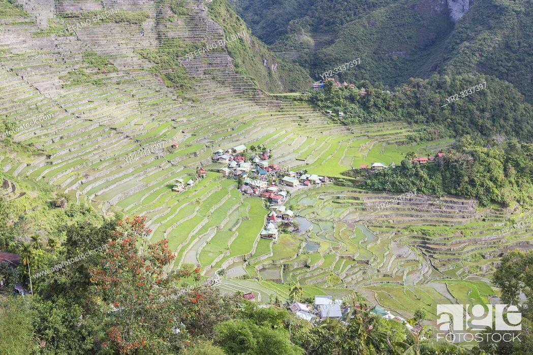 Imagen: Batad rice terraces, near Banaue, Philippines.