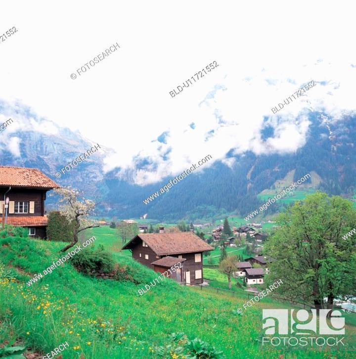 Stock Photo: mountain, house, landscape, scenery, field, tree.