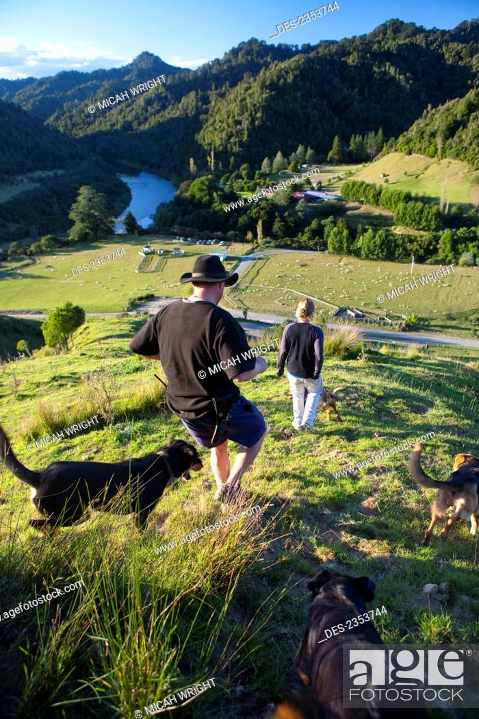 Stock Photo: People And Sheep Dogs Admiring The Views Overlooking Blue Duck Valley At Blue Duck Lodge, In The Whanganui National Park; Whakahoro, New Zealand.
