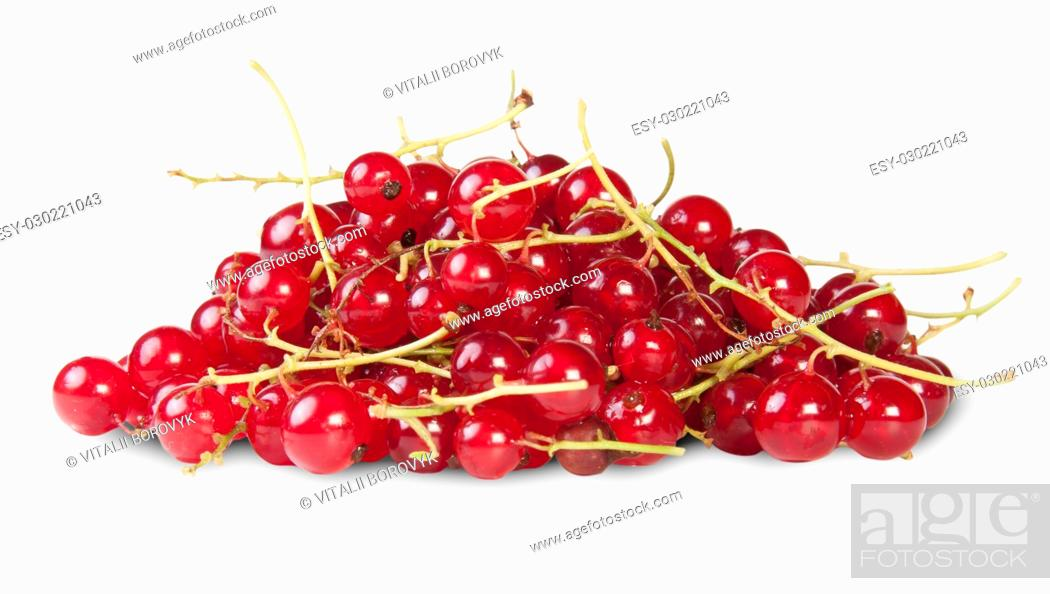 Stock Photo: Bunch Of Red Currant Isolated On White Background.