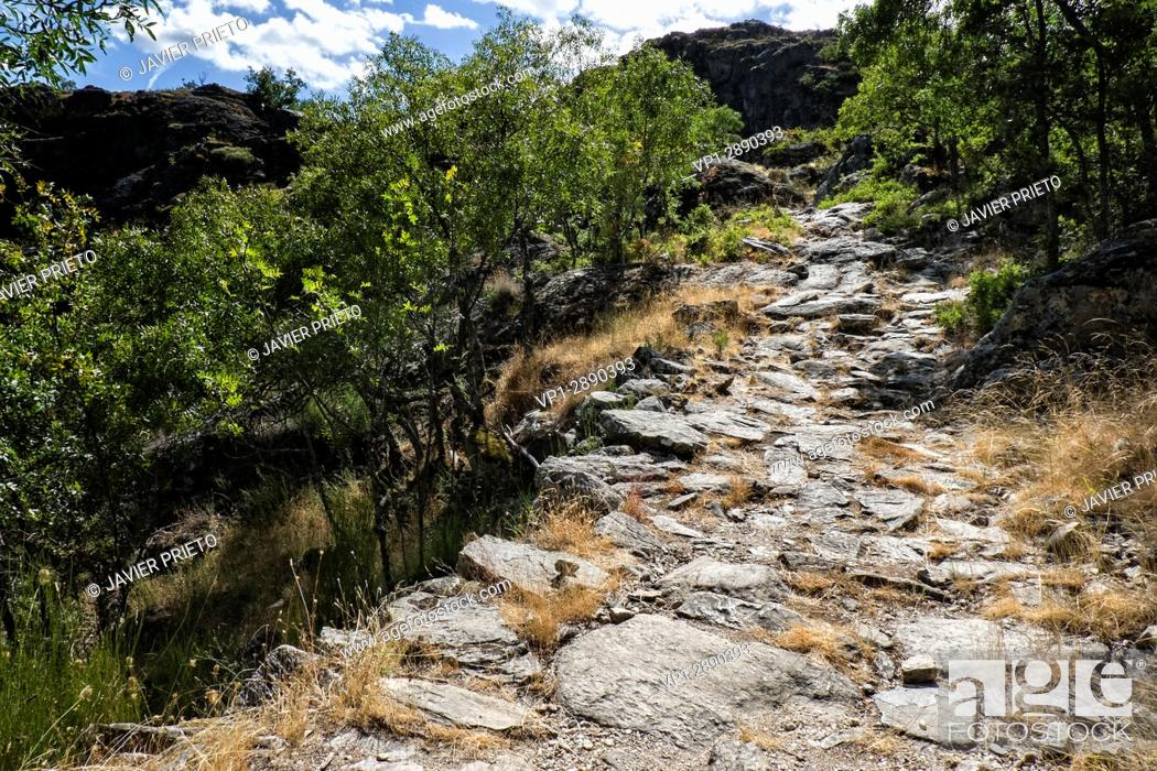 Stock Photo: Road section paved in the Path of the Monks. Old Ribadelago. Natural Park of the Lake of Sanabria. Zamora. Castilla y León. Spain.