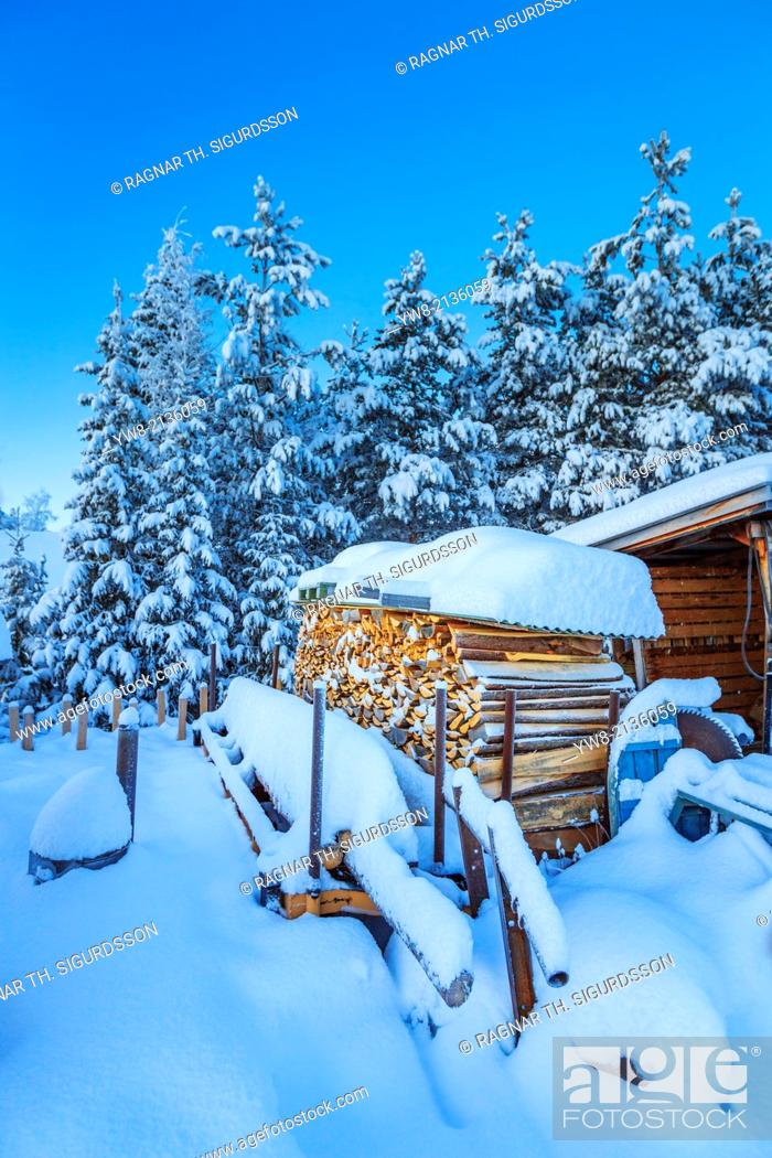 Stock Photo: Wood and snow covered trees in extreme cold temperatures, Lapland, Sweden.