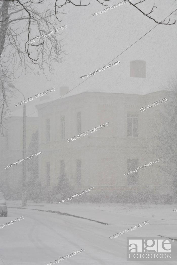 Stock Photo: snowfall.
