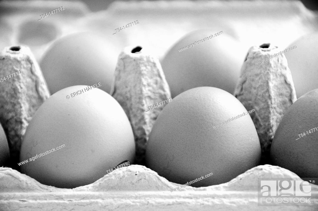 Stock Photo: Full egg carton.