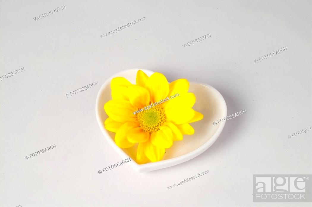 Stock Photo: interior, plate, house item, ceramic, dish, flower.