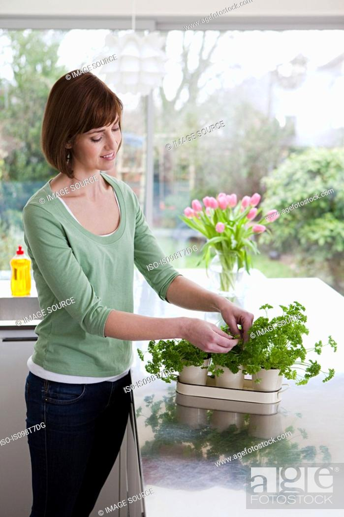 Stock Photo: Woman taking herbs from plant.