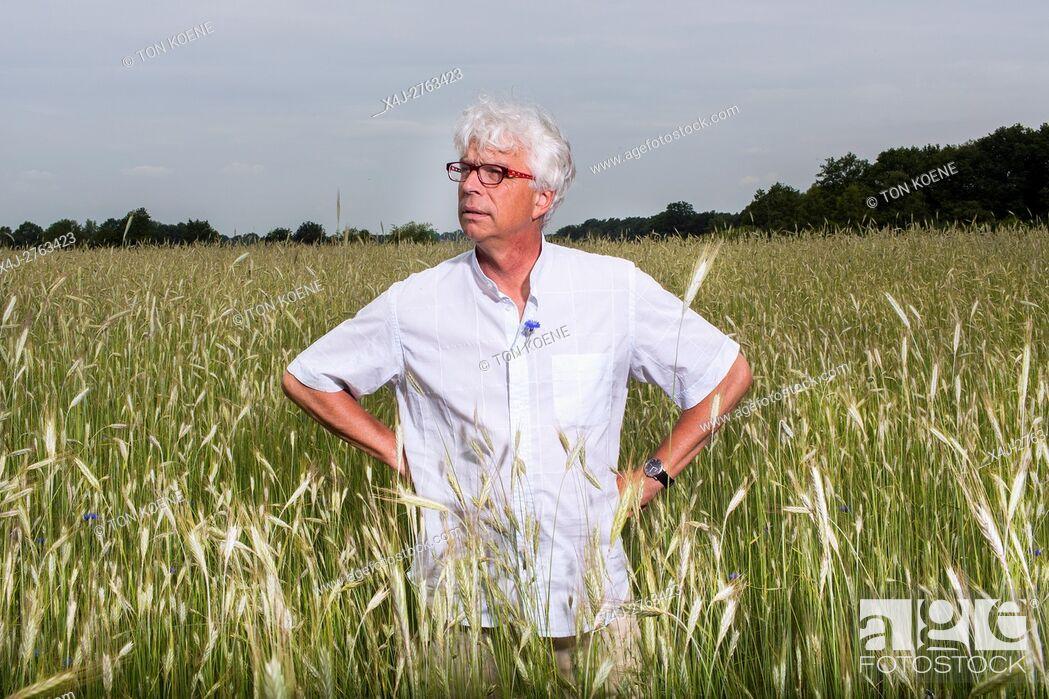 Photo de stock: Dutch farmer in his field.