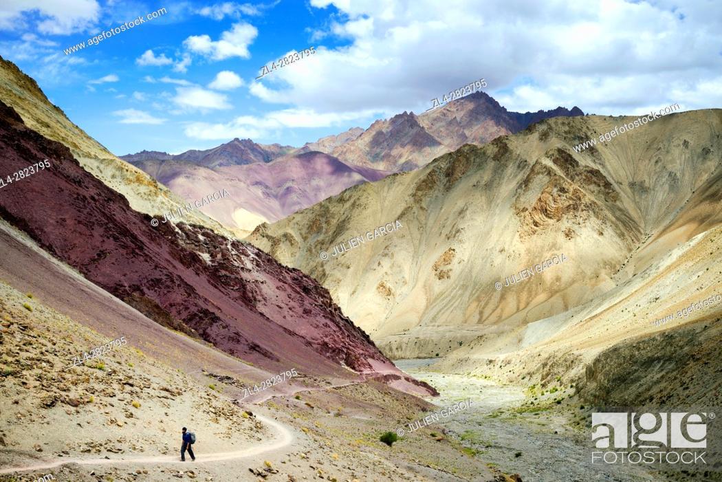 Stock Photo: India, Jammu and Kashmir State, Himalaya, Ladakh, Hemis National Park, Markha valley trek, hiker on the trail leading to Yurutse (4100m).