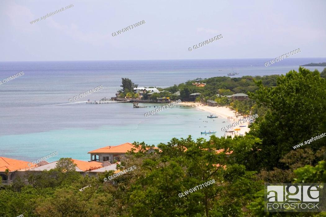 Stock Photo: High angle view of trees on the beach, West Bay Beach, Roatan, Bay Islands, Honduras.