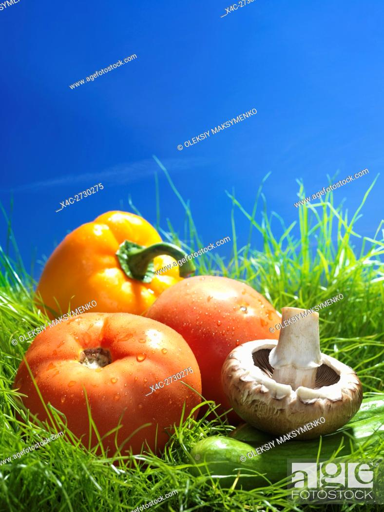 Stock Photo: Colorful fresh vegetables, field tomatoes, cremini mushrooms, pepper and cucumbers in green grass under blue sky artistic food still life.