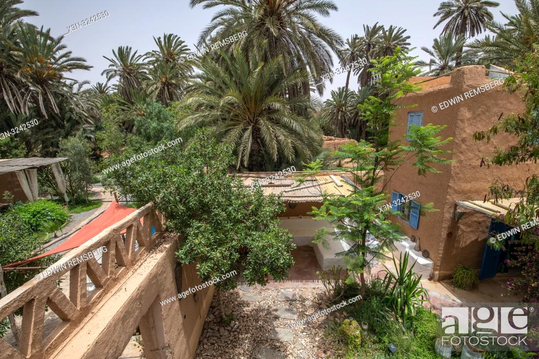 Stock Photo: High angle view looking out from traditional mud-brick constructed building with Palm trees grow around compound, Tighmert Oasis, Morocco.