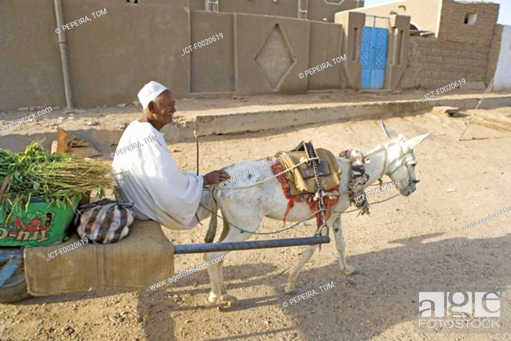 Stock Photo: Sudan, Bayuda desert, Dongola, shopping cart.