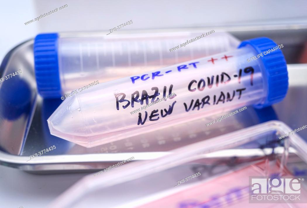 Stock Photo: Several covid-19 positive research vials of the new Brazilian variant in a laboratory, conceptual image.